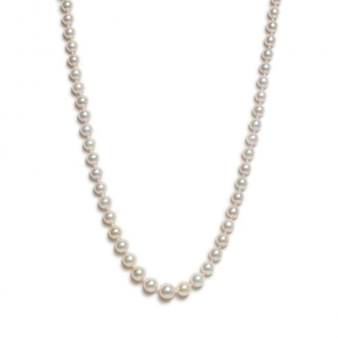 9ct Yellow Gold Akoya Cultured Pearl Graduated Strand